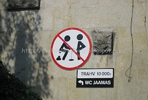 Ridiculous Street Signs