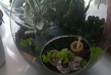 çiçekçilik&bahçe