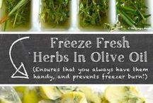 Herbsfreezing