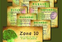 zone 10 gardening