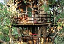 Unique tree houses
