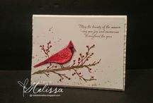 Beauty of the Season Cards SU / by Patricia Lemont