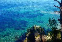 Skiathos island / #skiathos #island #greece #beach #vacation #holidays