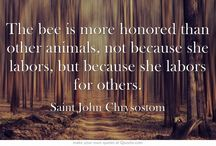 She Farms Bama: Quotable Bee Keeper
