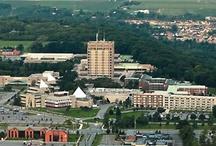 Brock University / St. Catharines, Ontario, Canada