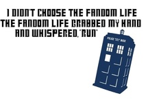 Fandom / It's a way of life