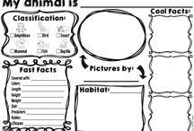 Writing Informational- Animals and Plants