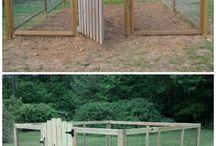 Rabbit proof fencing