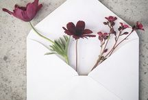 Envelopes e cones