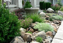 Landscaping  / by Kyleigh Austin Marcelia Gray