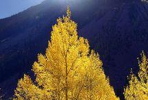Природа. Осень.