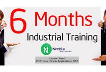 6 Months Industrial Training / Nimble Technocrats providing the best and high quality training in at our company.