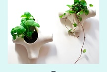 Designer home inspiration
