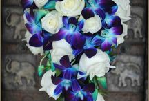 Wedding-Purple/Blues