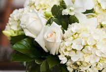 wedding / by Harriet Abel