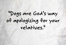 Pet Quotes / Deep truths and funny sayings about the furry creatures who warm our hearts.