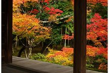 Nihon (japanese)