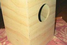 Cajun box