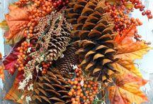 autumn / by Patti Sizemore