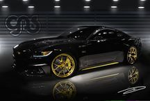 Black & Gold Mustang