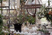 greenhouse...petersham