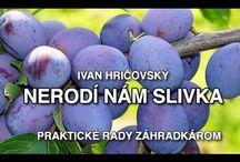 Ivan Hričovský zahrada