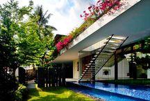 Pool Design / by Akemi Gardens
