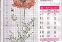 kwiaty xxx