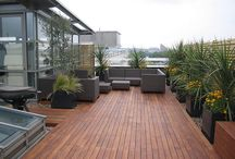 Roof garden / Arch