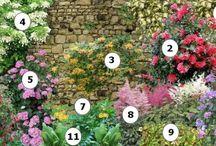 Techniques jardinage