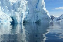Cruising to Antartica / Well travelled - well how about a journey to a continent only a very few go to, and one where only 100 people can visit at the same time. Check out these images of Antartica. / by Michelle // Gee You're Brave