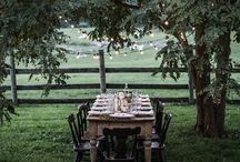 Sonoma farmhouse / Clients with Sonoma farmhouse. Want  a traditional look and some organic style. Olives, vanity vineyard, Roses, Romantic simplicity...