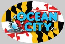 OceanCity.com Store / Buy discounted gift certificates and merchandise from OceanCity.com / by Ocean City Maryland - OceanCity.com