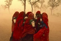 Steve McCurry / Photography