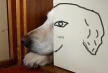 Good Dog / by Jen Drofsliarb