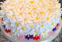Beginners Sugar craft cake