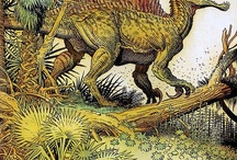Paleontology / From the ancient marine creatures,dinosaurs and plants  including old ancient land maps. / by Eve G.