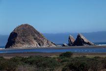 Topocalma y Puertecillo / Las playas de Topocalma y Puertecillo son ideales para la práctica del surf y de bellos paisajes.