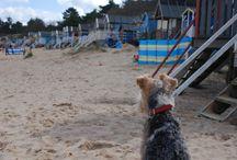 Beaches in North Norfolk