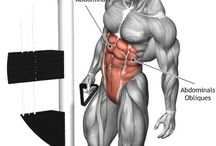 body part workout