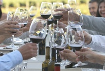 """Meet In Sonoma: Sonoma County Meetings & Groups / Meet on """"Vine Time"""" in California's Sonoma Wine Country, located 30 miles north of San Francisco. Sonoma provides meeting venues near vineyards, to quiet retreats overlooking the Pacific Ocean."""