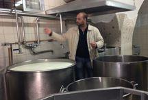 Alla scoperta della mozzarella DOP Campana / Escursione con degustazione della mozzarella DOP
