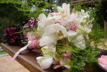 Cerimonial e Assessoria / Cerimonial e Assessoria de casamentos, bodas e festas de debutantes