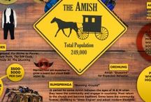 All about Amish