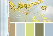 Paint Colours and Tips / by Jody MacMullen