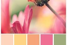 Paletas de colores para la inspiración y la decoración / Colores que me inspiran