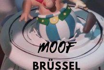 Belgien Reise / Verschiedene, besondere Ausflugsziele und Insidertipps für deinen unvergesslichen Urlaub in Belgien.