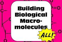 Biology Class / by Sarah Wheeler
