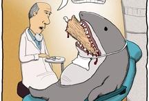 Dentist Funnies