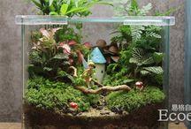 aquariam refurbish